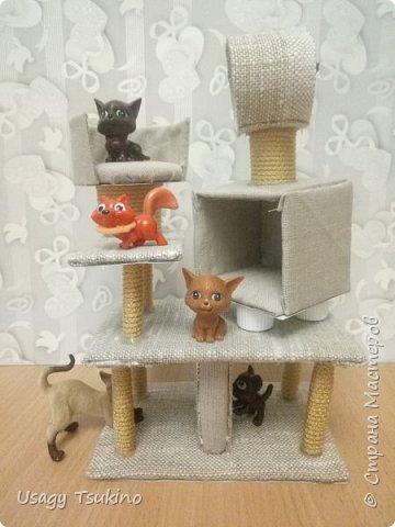 Лазалка для котов фото 1