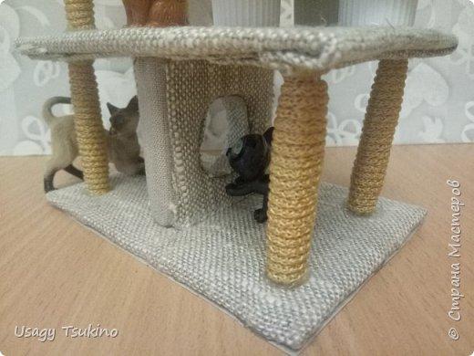Лазалка для котов фото 2