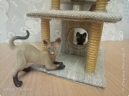 Лазалка для котов фото 3