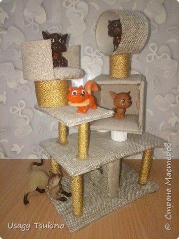 Лазалка для котов фото 8