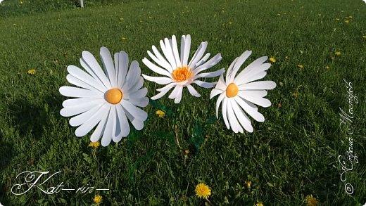 Вот такие цветы получились из обычных пластиковых бутылок.  фото 6