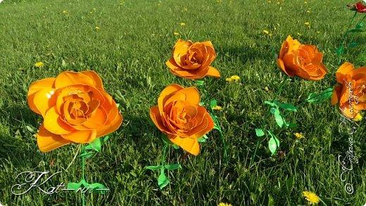 Вот такие цветы получились из обычных пластиковых бутылок.  фото 4