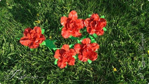 Вот такие цветы получились из обычных пластиковых бутылок.  фото 3
