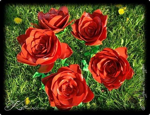 Вот такие цветы получились из обычных пластиковых бутылок.  фото 1