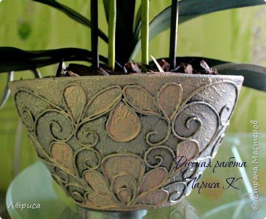 Привет СМ. Я к вам снова с орхидейками, они пока не идеальны, но я продолжаю учиться:) фото 7