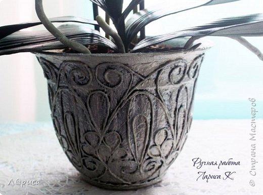 Привет СМ. Я к вам снова с орхидейками, они пока не идеальны, но я продолжаю учиться:) фото 9
