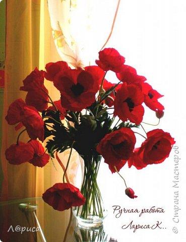 Букет маков в смешанной технике. Цветы и листья из фоамирана. фото 1