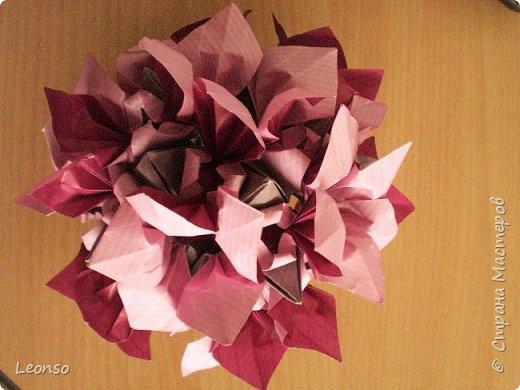 Kusudama Dual-Coloured by Aileen Edwin фото 3