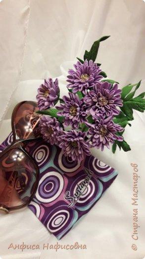 Добрый день мастерицы! Хочу с вами поделиться своей работой из фоамирана. Это вид искусства мне не дался, так легко. Благодаря мастеру в этом деле, я научилась делать такие работы. У нас в г. Норильске есть цветочная фея по имени Алина, которая учить этому волшебству. Посещая её мастер классы можно научиться творить такие цветы.