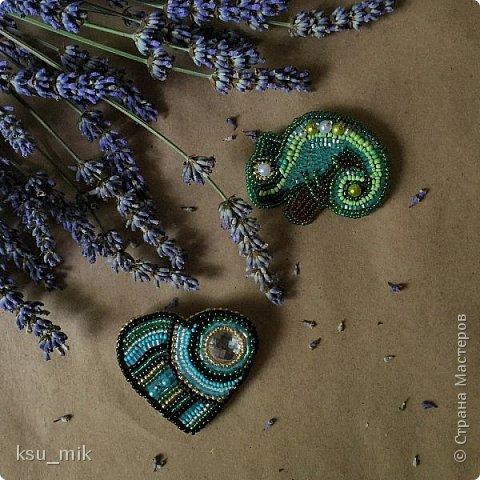 Здравствуйте! Меня зовут Ксения и я хочу представить Вам своё творчество - броши из бисера. фото 2