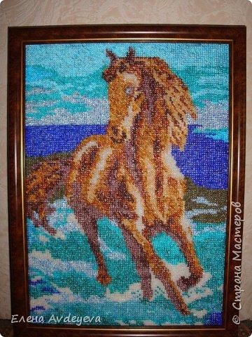 Конь в воде фото 1