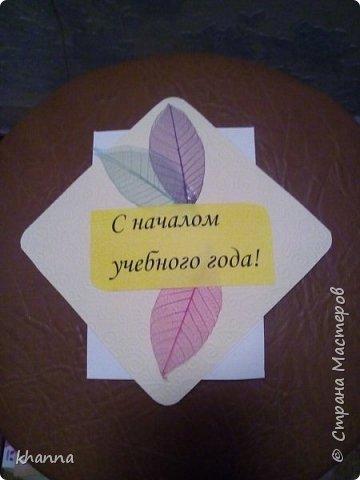 Сумочка - шоколадница фото 6