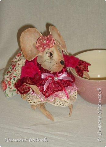 Мышка Сонечка фото 4