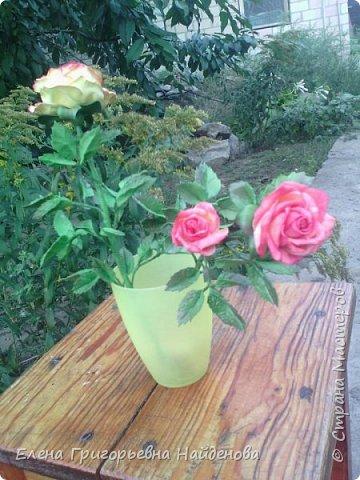 Здравствуйте,долго не решалась сделать цветы на стебле,принимайте моих первенцев.За качество фото извиняюсь. фото 2