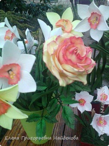 Здравствуйте,долго не решалась сделать цветы на стебле,принимайте моих первенцев.За качество фото извиняюсь. фото 5