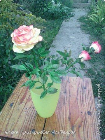 Здравствуйте,долго не решалась сделать цветы на стебле,принимайте моих первенцев.За качество фото извиняюсь. фото 6