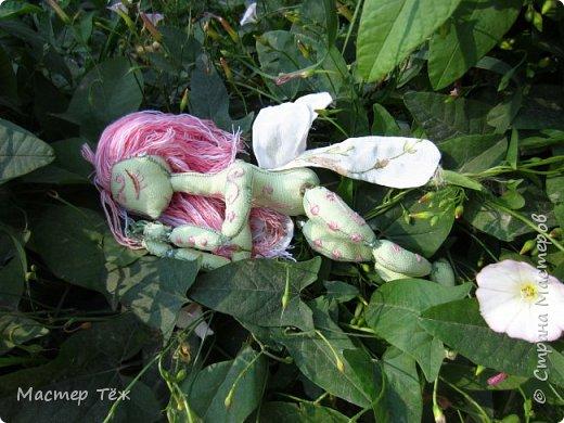 Вам нравятся цветы? А ирисы?  Лично мне нравятся полевые цветы, дикие за их свободу, за их нрав и ещё живучесть — ведь как вырастут из маленького зернышка сквозь асфальт и камни!   Но сегодня речь пойдёт от ирисах. Точнее о маленькой чудесной феи, что назвалась этим цветком.   Ирисы ведь такие — капризные, воздушные, и долго-долго спят, прежде чем показать всю свою красоту.  Вот и моя фея оказалась соней *смеюсь* Спит и спит, поэтому и назвал её фея сплюшка :3 Вдохновился видом цветов — розовый ирис, и постепенно работаю над образом фото 5