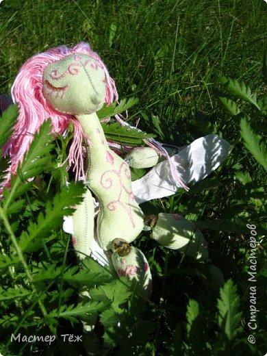 Вам нравятся цветы? А ирисы?  Лично мне нравятся полевые цветы, дикие за их свободу, за их нрав и ещё живучесть — ведь как вырастут из маленького зернышка сквозь асфальт и камни!   Но сегодня речь пойдёт от ирисах. Точнее о маленькой чудесной феи, что назвалась этим цветком.   Ирисы ведь такие — капризные, воздушные, и долго-долго спят, прежде чем показать всю свою красоту.  Вот и моя фея оказалась соней *смеюсь* Спит и спит, поэтому и назвал её фея сплюшка :3 Вдохновился видом цветов — розовый ирис, и постепенно работаю над образом фото 9