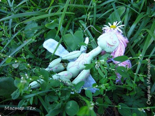 Вам нравятся цветы? А ирисы?  Лично мне нравятся полевые цветы, дикие за их свободу, за их нрав и ещё живучесть — ведь как вырастут из маленького зернышка сквозь асфальт и камни!   Но сегодня речь пойдёт от ирисах. Точнее о маленькой чудесной феи, что назвалась этим цветком.   Ирисы ведь такие — капризные, воздушные, и долго-долго спят, прежде чем показать всю свою красоту.  Вот и моя фея оказалась соней *смеюсь* Спит и спит, поэтому и назвал её фея сплюшка :3 Вдохновился видом цветов — розовый ирис, и постепенно работаю над образом фото 13