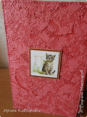 Три открытки про кошек. Рисунки Натальи Шумихиной (в СМ -Ильиновой) фото 7