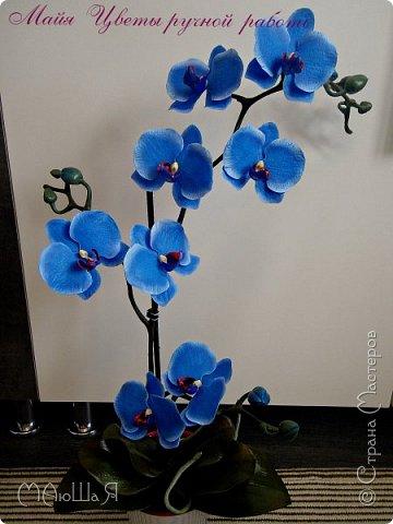 Здравствуйте, жители страны!!! Орхидейная феерия №2, так я её назвала, т к не успеваю показать каждую в отдельности. Эта запись посвящена моим работам над орхидеями за последнее время. фото 10