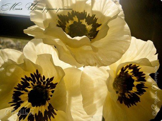 Здравствуйте, жители страны!!! Мои маки из холодного фарфора, вылеплены ещё весной, всё времени нет опубликовать.....))) фото 16
