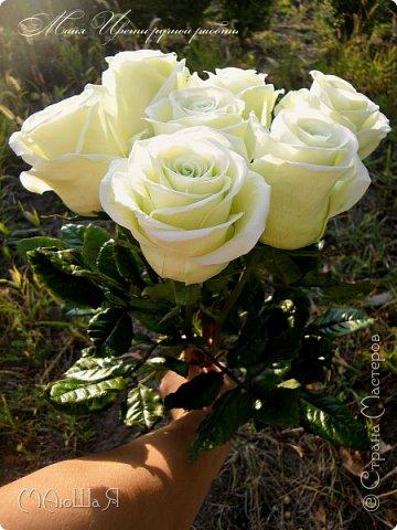 Здравствуйте, жители страны! Так как создавала много таких роз и много прекрасных откликов о них, решила снять немного фото процесса, надеюсь будет понятно и кому-нибудь пригодятся. Если что спрашивайте, опыта в мастер классах у меня нет. фото 17