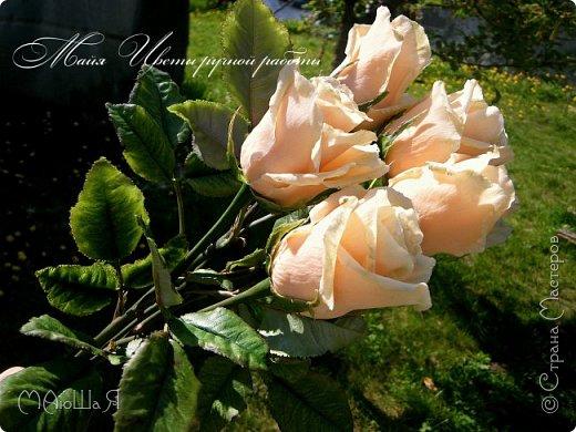 Здравствуйте! Букет роз сорта Талея очень полюбившийся мной. Помог мне в создании этих прекрасных цветов мастер класс Инны Голубевой, за что ей огромное спасибо! фото 5