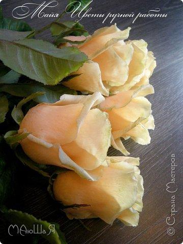 Здравствуйте! Букет роз сорта Талея очень полюбившийся мной. Помог мне в создании этих прекрасных цветов мастер класс Инны Голубевой, за что ей огромное спасибо! фото 4