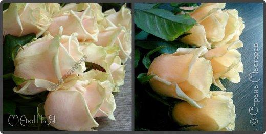 Здравствуйте! Букет роз сорта Талея очень полюбившийся мной. Помог мне в создании этих прекрасных цветов мастер класс Инны Голубевой, за что ей огромное спасибо! фото 3