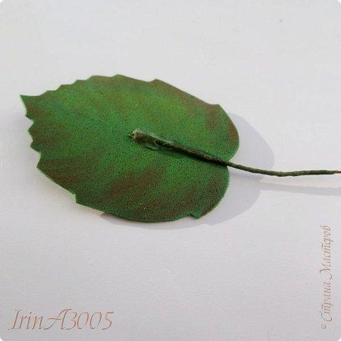 «Ветка орешника»  фото 5