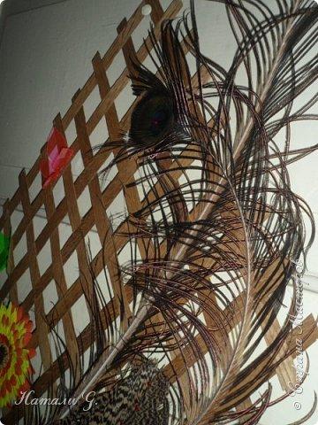 Панно с перьями фото 5