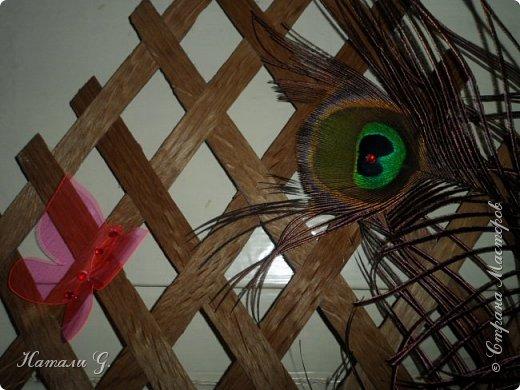 Панно с перьями фото 6