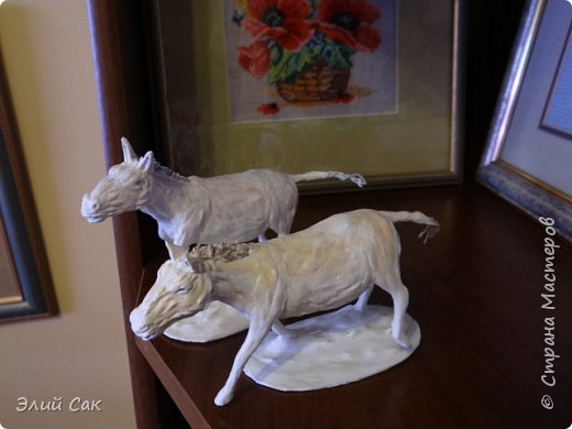 ло́шадь Пржева́льского фото 2