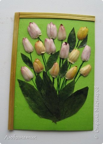 """Всем большущий  привет! Представляю вам АТС карточки """"Живые краски мира"""". Живые краски мира - это цветы. Карточки  можно отнести к Эко стилю наверное, ну и посвятить окончанию лета.   Техника аппликация. Цветы составлены из лепестков гелихризума (бессмертник); использовала листья липы, рябины и клёна, овсяную солому. Для сохранности покрыла аэрозольным лаком, листья подкрашивала акварельными красками. Середина цветов - вата, мак.  Я должна карточки мастерицам Элайджа https://stranamasterov.ru/user/399311 (за """"Ягодный микс""""),  Нельча (Неля) https://stranamasterov.ru/user/425110 (за """"Древо жизни""""),  ИРИСКА 2012 (Ирина) https://stranamasterov.ru/user/191152 (за """"Деревья""""),  Фасинасьён (Татьяна) https://stranamasterov.ru/user/197116 (за """"Дверца в сад""""),  Самурайчик (Ирина) https://stranamasterov.ru/user/47165 (за АТС мини серия) и   Torkin (Инна)  https://stranamasterov.ru/user/420446 (за """"Барджелло"""") прошу их выбирать, если им понравиться.  фото 6"""