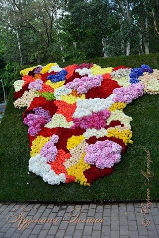 """По сложившейся традиции всех,кто хотел попасть на ежегодную выставку """"Город-сад"""",но не смог в силу ряда обстоятельств,я приглашаю на виртуальную экскурсию. фото 3"""