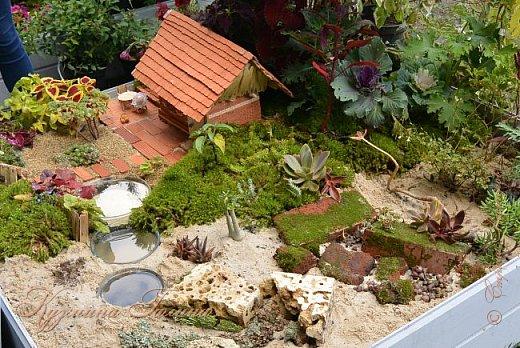 """По сложившейся традиции всех,кто хотел попасть на ежегодную выставку """"Город-сад"""",но не смог в силу ряда обстоятельств,я приглашаю на виртуальную экскурсию. фото 12"""