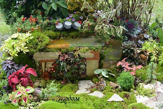 """По сложившейся традиции всех,кто хотел попасть на ежегодную выставку """"Город-сад"""",но не смог в силу ряда обстоятельств,я приглашаю на виртуальную экскурсию. фото 24"""