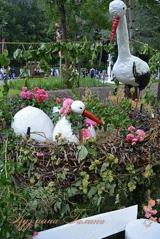 """По сложившейся традиции всех,кто хотел попасть на ежегодную выставку """"Город-сад"""",но не смог в силу ряда обстоятельств,я приглашаю на виртуальную экскурсию. фото 96"""