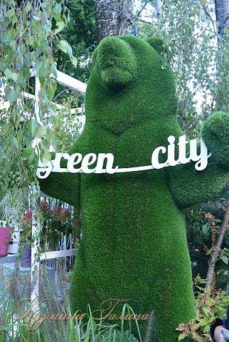 """По сложившейся традиции всех,кто хотел попасть на ежегодную выставку """"Город-сад"""",но не смог в силу ряда обстоятельств,я приглашаю на виртуальную экскурсию. фото 126"""