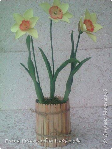 Как хочется весны фото 3