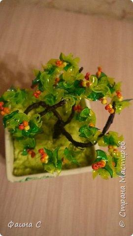 Деревья из пластиковых бутылок фото 11