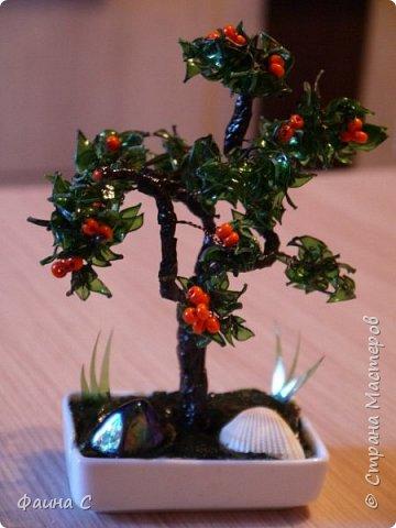 Деревья из пластиковых бутылок фото 14