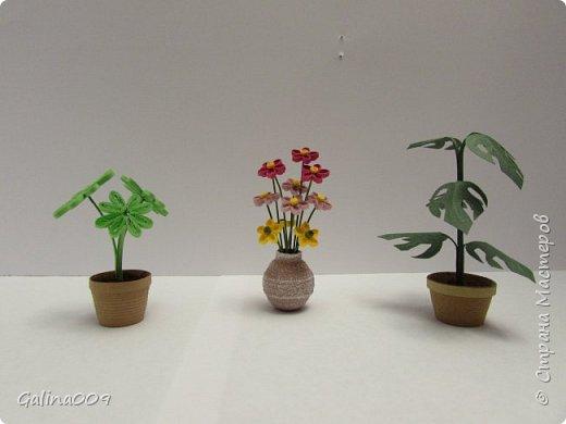 Миницветочки в горшочках фото 4