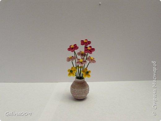 Миницветочки в горшочках фото 5