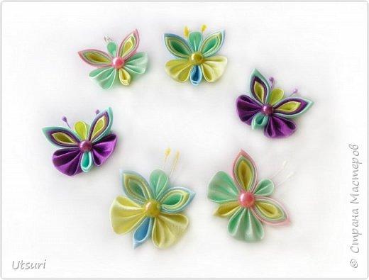Стаи бабочек и стрекозки фото 2