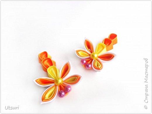 Стаи бабочек и стрекозки фото 5