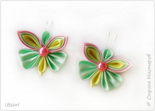 Стаи бабочек и стрекозки фото 3