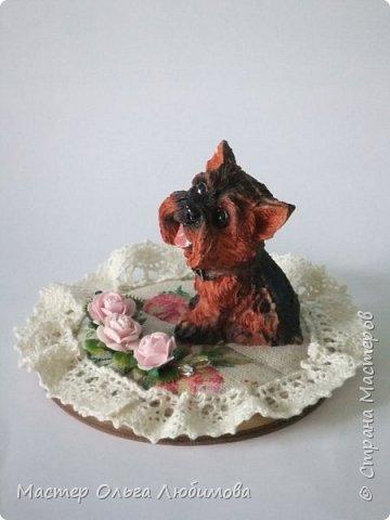 В продолжение темы символа 2018 года была сделана еще одна миниатюра с йоркширским терьером. Милая собачка с нежно-розовым язычком уютно разместилась на подушечке с кружевом и нежно-розовыми розочками. Такая миниатюра прекрасно впишется в домашний интерьер и будет радовать не только в зимний период, но и в течение долгого времени. Отличный подарок к Новому году! Данная миниатюра в единственном экземпляре! фото 4