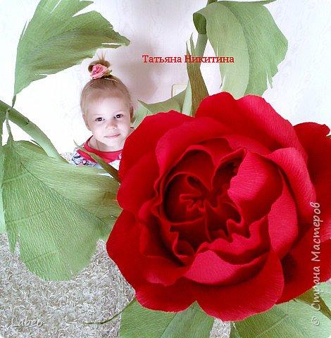 Здравствуйте всем гостям! Давненько не выкладывала ни чего, исправляюсь.:-)  фото 28